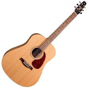 Top acoustic guitar songs learn