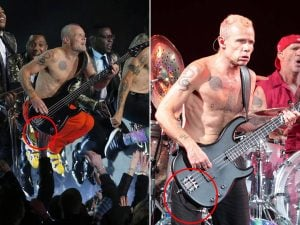 Flea-unplugged