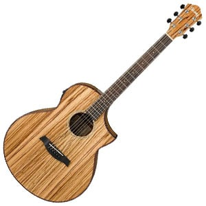 Ibanez Exotic Wood AEW40ZW Review – A Touch Of The Exotic
