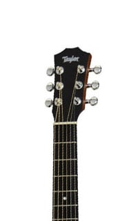 Taylor Taylor Swift Signature Headstock