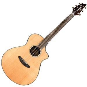 Breedlove Solo Concert Review – A Beautiful Breedlove with Great Innovation