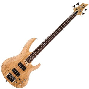 ESP LTD B-204SM FL Review – The Most Eye-Catching Bass Under $500?