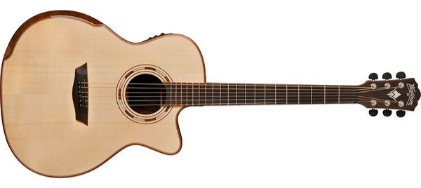 Washburn WCG25SCE Review (2019)